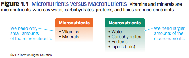 animal nutrition distinguish macronutrients and micronutrients Macronutrients vs micronutrients plants need nutrition for their growth plants synthesize all the compounds they need using these mineral elements and by.
